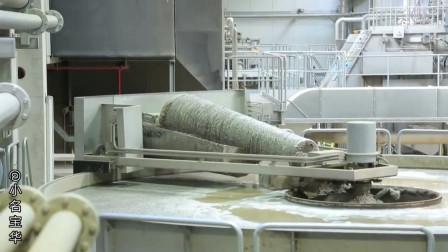 德国造纸厂实拍