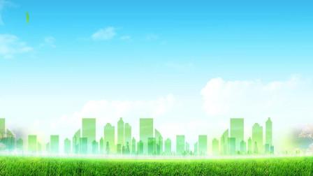 四川省生态文明促进会2018年年会