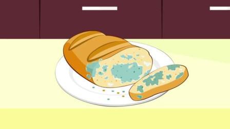 不小心吃了发霉的面包怎么办