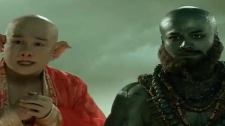 猴哥,你可以叫我八戒呦!师兄弟三人见面却被唐僧推下悬崖!