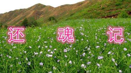 刘纯松岳西鼓书《还魂记》第一集