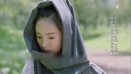 《小女花不弃》卫视预告第1版:花不弃为救陈煜遭追捕,逃跑中途被莫若菲营救 小女花不弃 0