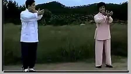 付清泉杨氏太极拳85式教学(47--57式)