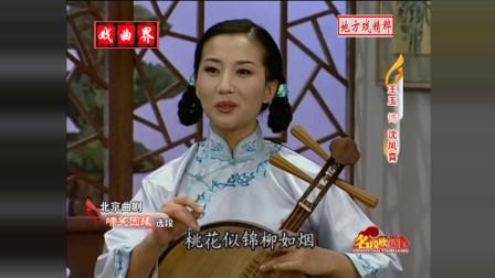曲剧《啼笑因缘》秦剧团 王玉