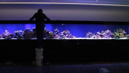 七米海缸开缸全记录(上)-亮哥养鱼频道
