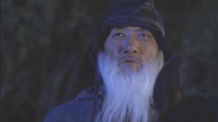 七剑下天山:白胡子老爷爷率七剑支援,论勇敢我只服七剑!