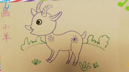儿童学画简笔画-画小羊,幼儿学绘画入门基础,少儿学画画初学,小朋友美术亲子【乐成宝贝】