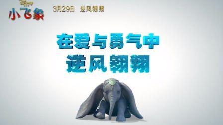 """《小飞象》真""""象""""演绎,Q萌再续经典传奇"""