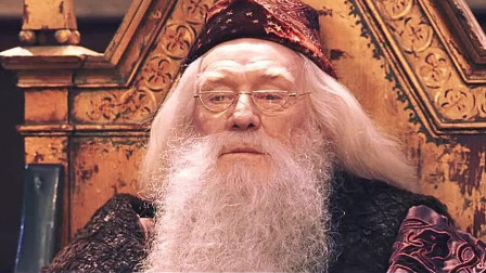 麦格点到哈利波特时,众人屏息,都想知道哈利波特会去哪里