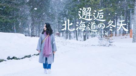 北海道不止爱情与电影!一起抓住冬天的尾巴,邂逅北海道的浪漫!