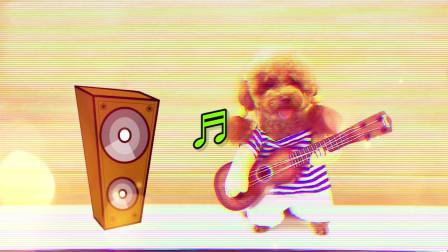 小泰迪的freestyle,是不是有点嗨过头了!
