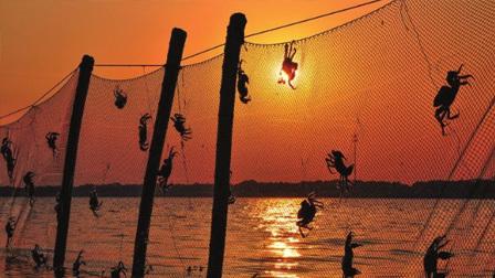 航拍中国 第二季 盛产大闸蟹的阳澄湖你一定不会感到陌生,聆听昆区感受江苏的人文情怀