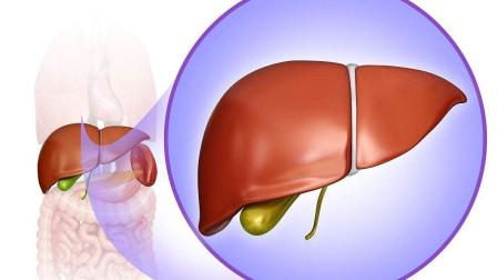 最伤肝的3大行为千万别做!养肝护肝,只需记住这3点!