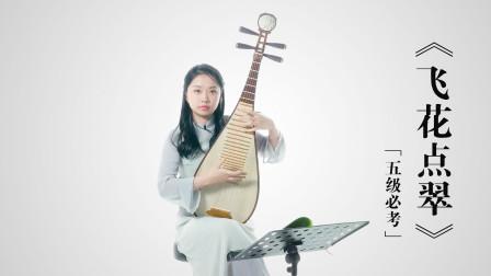 新爱琴从零开始学琵琶 第65课 五级必考曲目《飞花点翠》(四)
