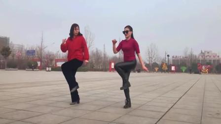 广场舞《中国美草原美DJ》时尚舞姿