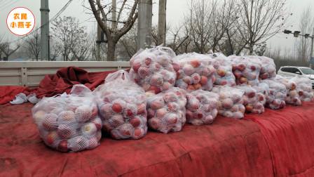 农村媳妇在路边摆摊卖水果,一年能收入多少?农村媳妇告诉你实情
