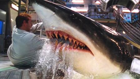 女博士培育出高智商鲨鱼,比人类还聪明,闯出了横祸!