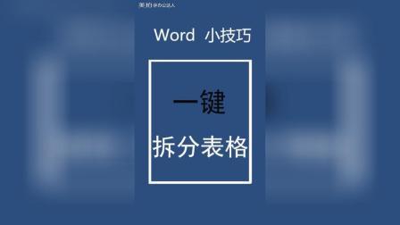 学习记录: word一键拆分表格