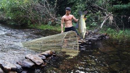 大鱼钻进竹笼就出不来,不会逆流而上吗?