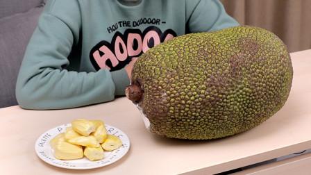 世上最重的水果,快来看看怎么选!
