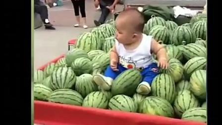 宝宝和爸爸一起去卖瓜, 爸爸却这样对宝宝, 想问爸爸良心痛不痛
