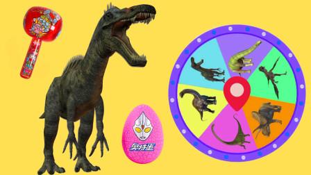 转盘转转转 学习似鳄龙等6种恐龙