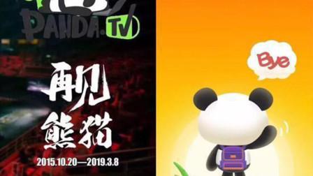 熊猫TV破产关闭,王思聪也无力翻盘
