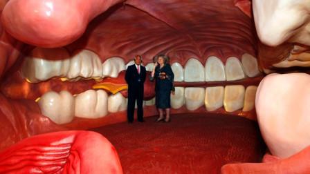 世界首座人体博物馆,内部结构相当逼真,每次只能进16人!
