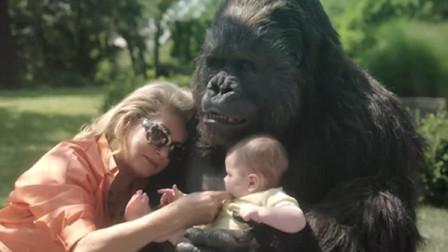 富婆闲来无事去马戏团玩,跟一只猩猩一见钟情了,最后还结婚生子