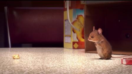 空巢老人孤独无聊,于是每天以抓老鼠为乐趣,从此一发不可收拾