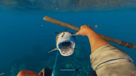 荒岛求生22:好不容易联系上饺子非非 就面临被鲨鱼生吞的致命危机