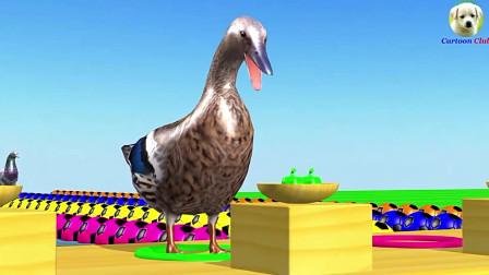 鸡,鸭,鹅穿过河流吃彩色水果蔬菜变颜色,学习颜色和英语