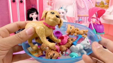 叶罗丽和冰公主的宠物狗狗和猫猫公仔玩具试玩