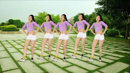 时尚动感DJ广场舞《漂亮小妹》自由舞步32步 !