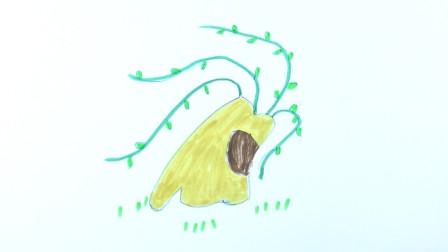 柳树树叶特点