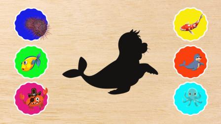 学习认识海狮、海胆、锦鲤等海洋动物,熊小仁识动物