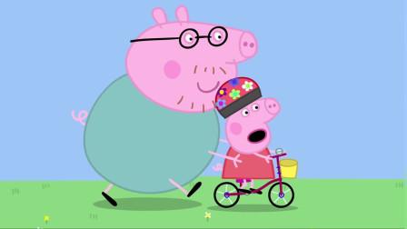 《小猪佩奇全集》猪爸爸教佩奇骑自行车,太棒了