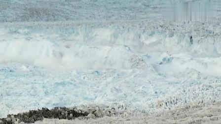 温室效应越来越严重,极地冰山在不断的融化,我们该怎么弄自救?