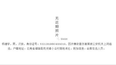 """逃犯""""最嫩通缉照""""引热议 警方致歉:已撤除"""