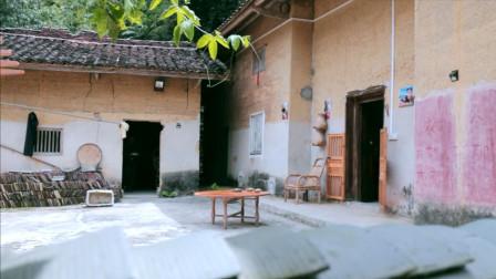 外国退休警察到中国山村当志愿者,帮村民种百香果致富