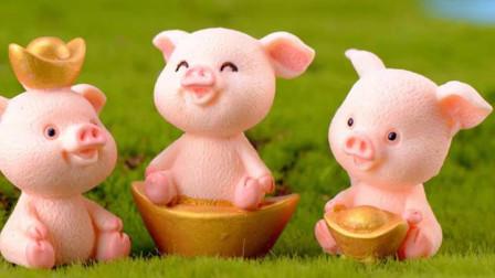 微景观卡通小动物创意手工DIY微观盆栽摄影小饰品树脂可爱5款发财猪蛋糕装饰小摆件