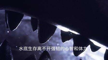 Panerai Bronzo 全新潜行系列青铜腕表