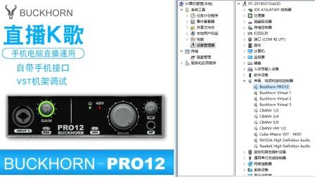 跳羚pro12声卡调试驱动安装教程视频