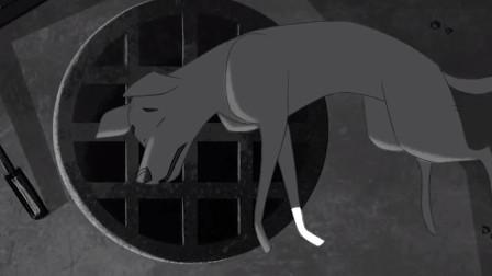 催泪动漫《一只狗的故事》,狗狗用自己的生命,诠释了对人类的爱