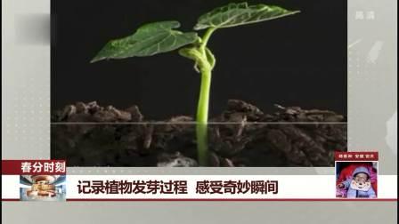 记录植物发芽过程 感受奇妙瞬间 每日新闻报 20190321 高清版