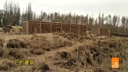 新疆葡萄干是在这样的房子里晾晒,四十天的时间就可以做成葡萄干,你知道如何制作吗?