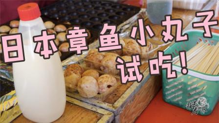 """特色小吃""""章鱼小丸子"""",在日本吃和国内有什么区别。"""