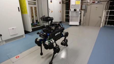 Anymal:比波士顿狗子还厉害的四足机器人