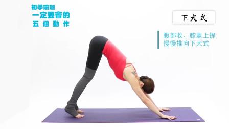 从零开始练瑜伽 瑜伽教练培训班 经典0基础入门教程 在家即轻松学会