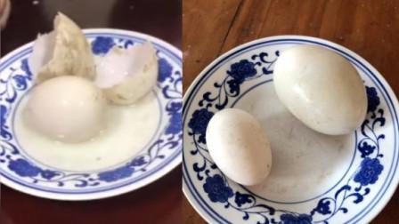 """蛋中有蛋!慈溪一农户家母鸭产下4枚""""双壳蛋"""""""